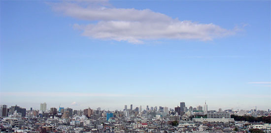 20051119.jpg