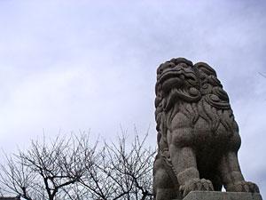 20060104-1.jpg