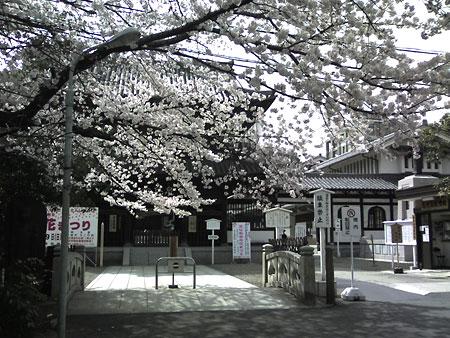 20060329.jpg