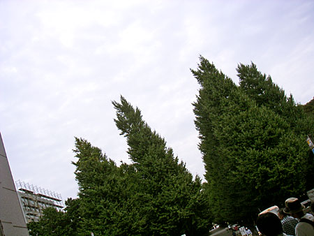 20060917.jpg