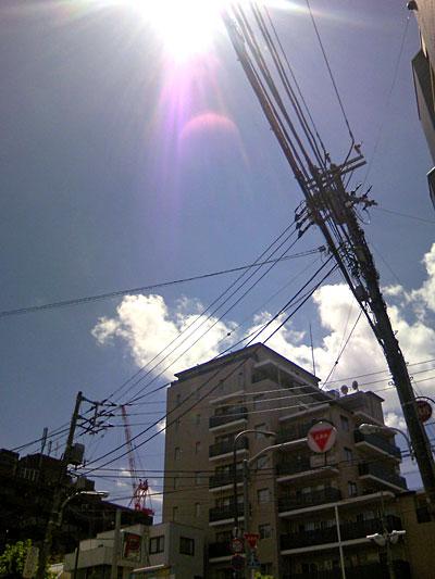20070809.jpg